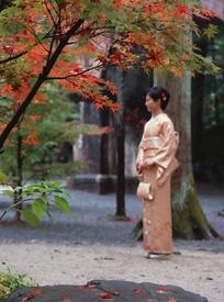 枫树林里提着手包穿和服的日本女人