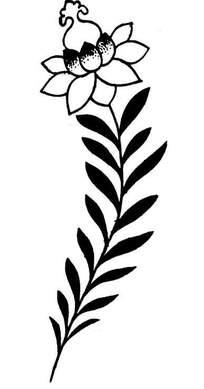 矢量传统图案——折枝莲