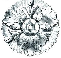 郁金香和叶子欧洲古典花纹