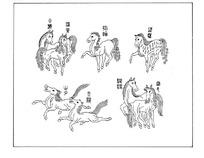 中国古典图案-许多马构成的图案