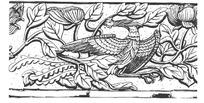 中国吉祥图案-牡丹枝叶和回头凤凰构成的图案