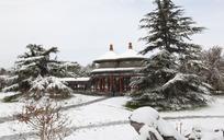 冬季古建亭子和雪松