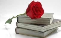 一枝美丽的玫瑰花和书本图片