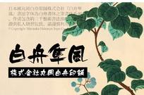 白舟隼风毛笔书法字体