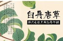 白舟唐草毛笔书法字体
