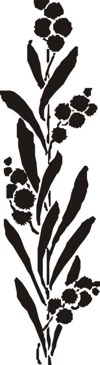 手绘云朵状的黑色叶子矢量图_花草树木