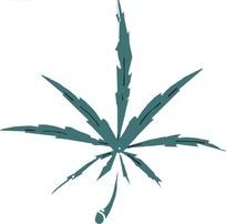 锯齿状叶子和盛开的花朵线描图图片