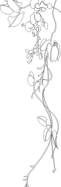 弯曲的藤蔓上的花朵和叶子线描图