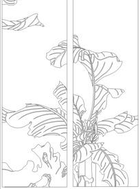 枝繁叶茂的芭蕉树线描图图片