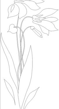 线描棕榈树图片