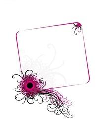 粉色黑色卷藤和方形边框