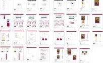中国银行VI手册设计