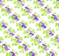 植物插画一片紫色葡萄背景