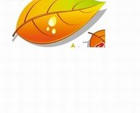 促销标签 滴着水滴的黄色树叶标签