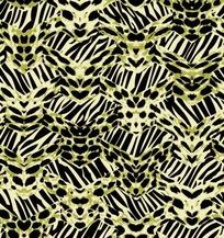 斑马纹上的豹纹蝙蝠图案