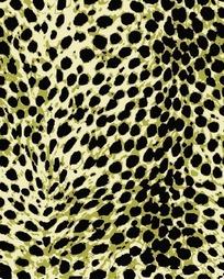 绿色豹子皮纹背景