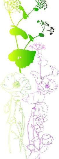 淡粉色线条背景上的手绘开花的植物