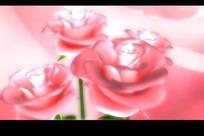 四朵旋转的粉色玫瑰花