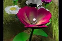 草丛郁金香盛开的结婚戒指