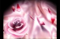 旋转的粉红玫瑰和飘散的花瓣