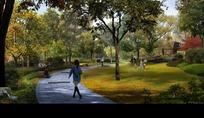 幽静的公园草坪绿树和道路效果图psd素材