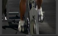 健身器材上狂热运动的生命