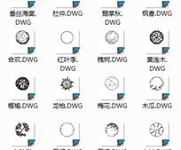 植物CAD图块