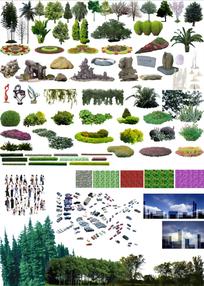 配景植物ps格式