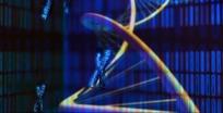 蓝色立体三维视频短片MOV