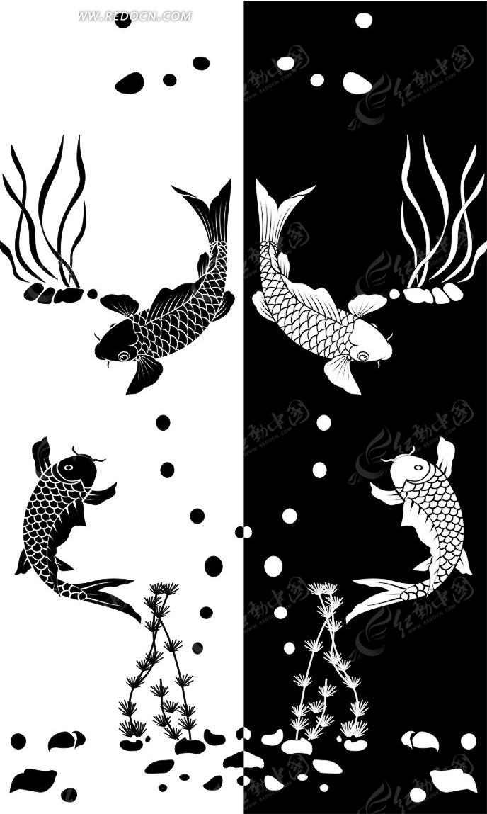 黑白鱼图图片