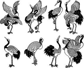 形态各异的仙鹤线描稿