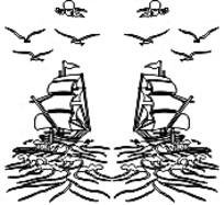 帆船海鸥白描画