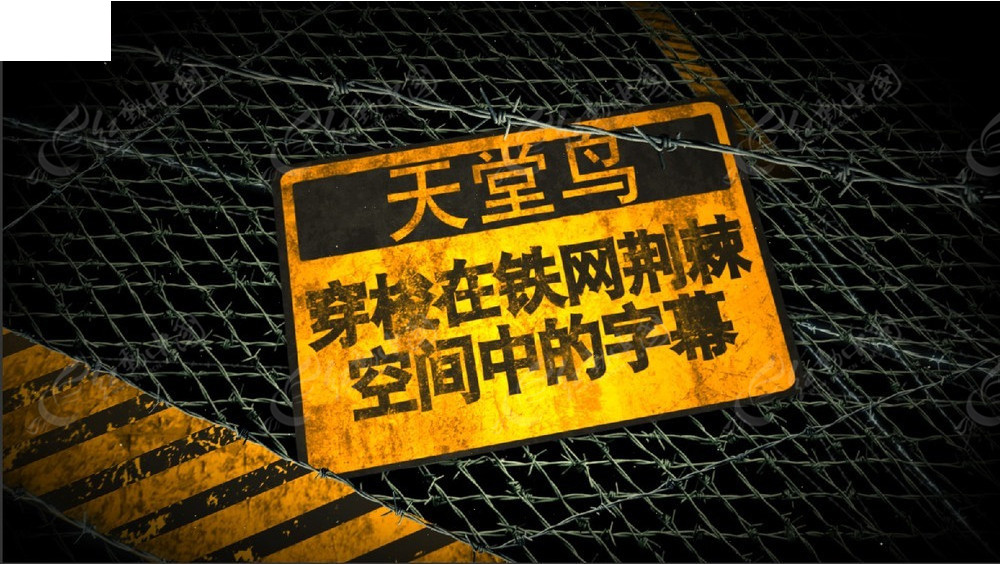 穿梭在铁网荆棘空间中的字幕展示