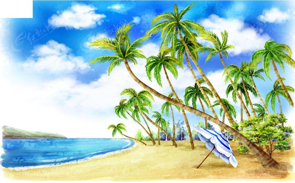 海滩风景和椰子树