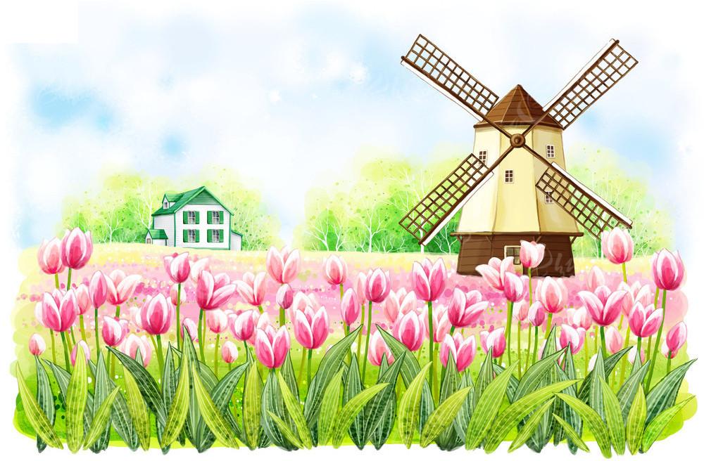 郁金香花丛后的荷兰风车房子