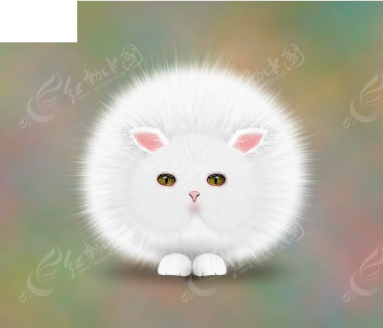 猫咪简笔画彩色