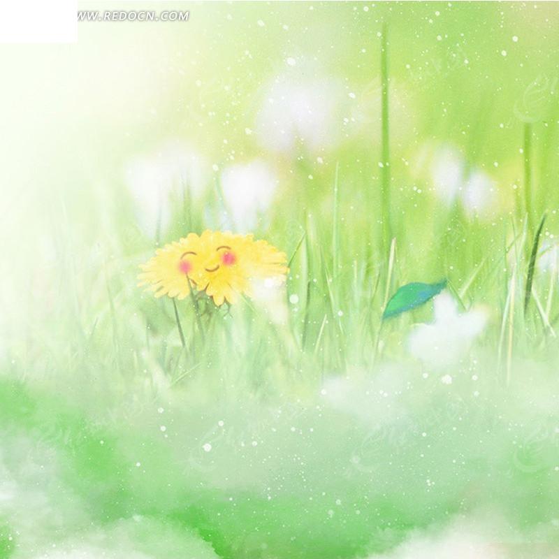 啵啵网青草_黄色花朵和青草淘宝主图背景