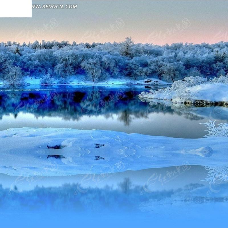 冬天的树林和湖泊淘宝主图背景