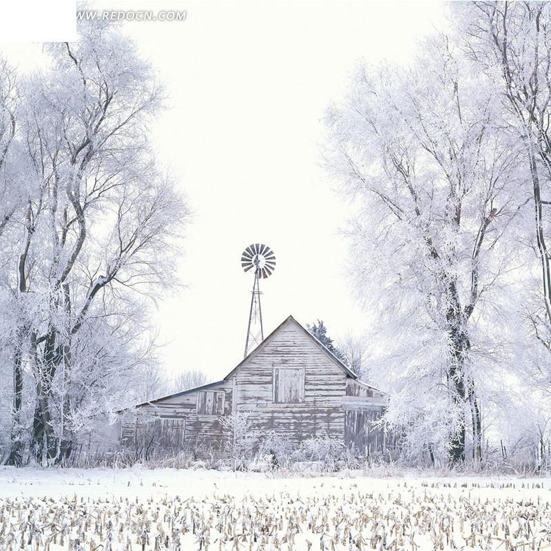 雪中房子和树淘宝主图背景