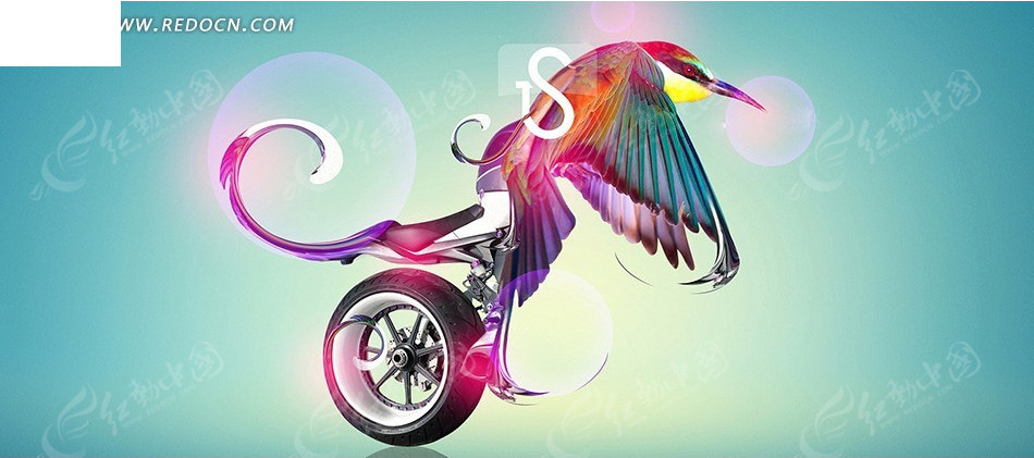 鹦鹉和车轮淘宝店招背景图片