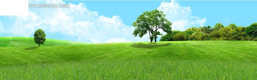 草地和树淘宝店招背景jpg素材免费下载_红动网图片