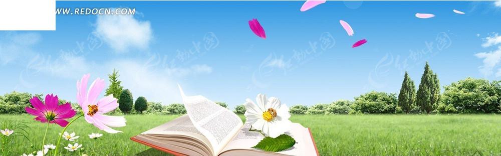草地书本和花朵淘宝店招背景jpg素材免费下载_红动网图片