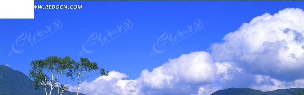 树和蓝天白云淘宝店招背景