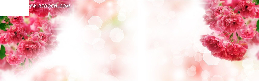 粉红的花朵淘宝店招背景_淘宝海报|网店广告