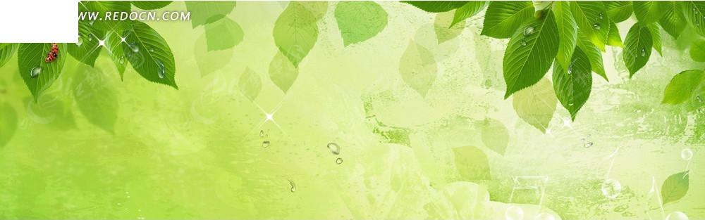 绿色的叶子淘宝店招背景jpg素材免费下载_红动网图片