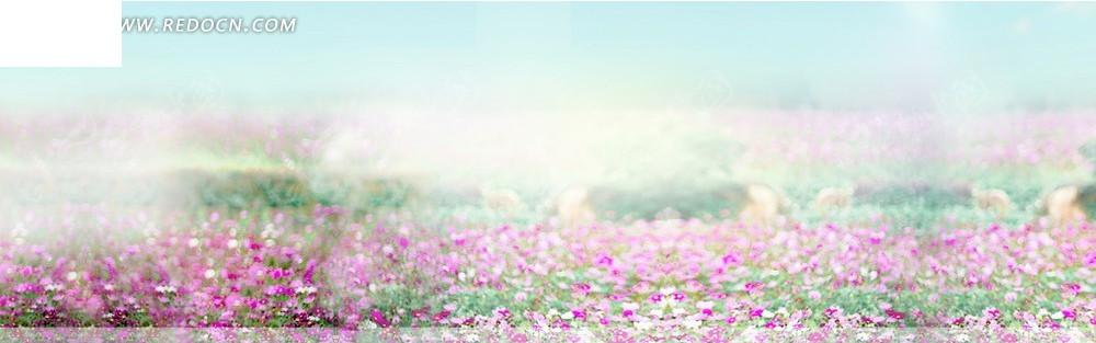 美丽的花海淘宝店招背景jpg素材免费下载_红动网图片
