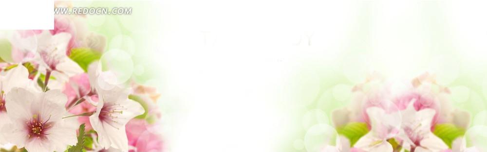 阳光下的花朵淘宝店招背景jpg素材免费下载_红动网