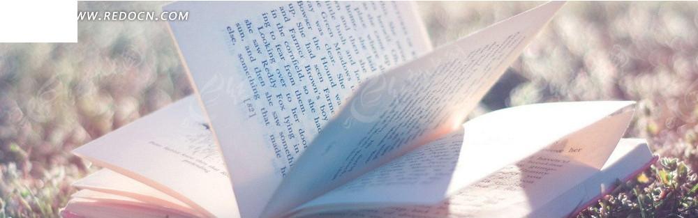 阳光下的书本淘宝店招背景jpg素材免费下载_红动网图片