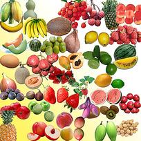 各种新鲜水果素材PSD