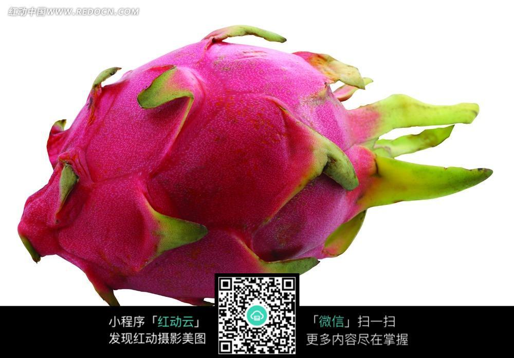 新鲜的火龙果_水果蔬菜图片